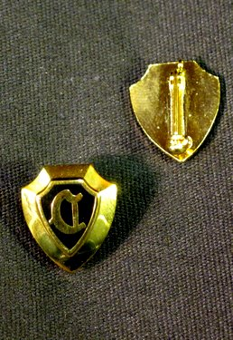 Gold Plated Pin